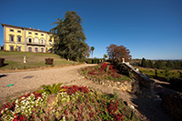 Villa di Monaciano mini-photo